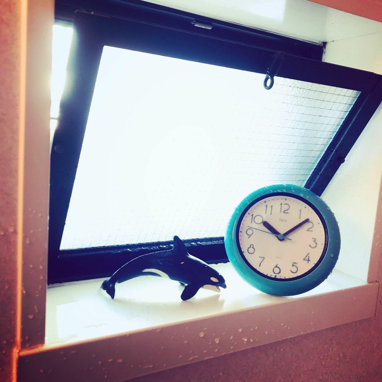 ≪メーカー直販≫ MAG(マグ) 防滴 防塵 壁掛け時計 置時計 置掛兼用 バブルコート FEW130 18cm 1個 ステップ秒針 IP52 お風呂 バスグッズ タオルハンガー キッチン 見やすい おしゃれ